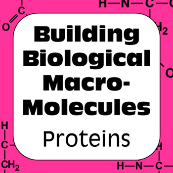 Proteins Biochemistry: Building Biological Macromolecules High School Biology