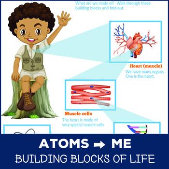 Building Blocks of Life Printable Chart