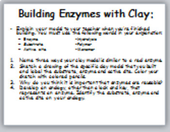 Building Enzymes with Clay Activity