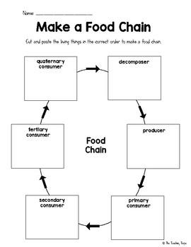 Building Food Chains Worksheet Activities