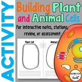 Building Plant and Animal Cells Exploration Activity