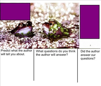 Building Questioning Skills using Informational Text - Frogs