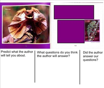 Building Questioning Skills using Informational Text - Lizards