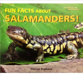 Building Questioning Skills using Informational Text - Salamanders