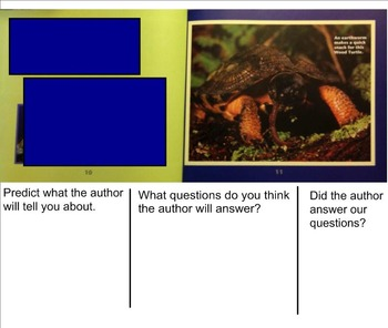 Building Questioning Skills using Informational Text - Turtles