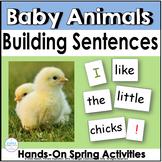 Building Sentences ~ Baby Animals in Spring