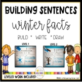 Building Sentences: Winter Facts for Kids