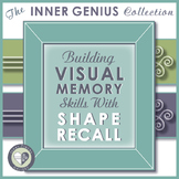Building Visual Memory Skills with Shape Recall
