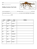 Building Vocabulary - Prefixes/Root Words/Suffixes