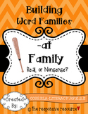 Building Word Families: Real or Nonsense? -at Family