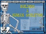 Building a Human Skeleton ... and more! / Distance Learning