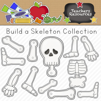 Build a Skeleton Clipart Collection || Commercial Use
