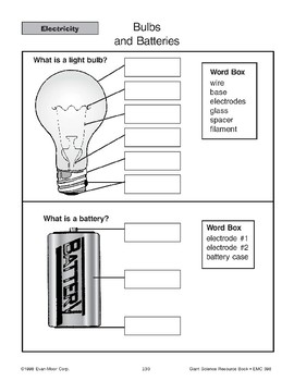 Bulbs and Batteries