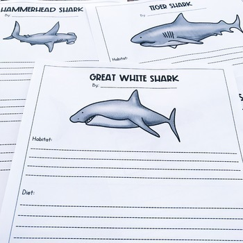 Bull Shark Close Read, Text Features, and Research