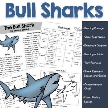 Nonfiction Reading Comprehension Passage and Questions (Bull Sharks)