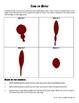 Bullet Trajectory -- Trigonometry - Forensics - 21st Century Math Project