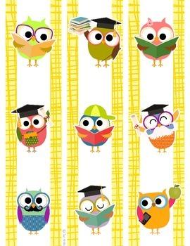 Bulletin Board Border - Owl Theme