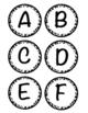 Bulletin Board Letters Leopard Print