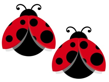 Bulletin Board Set: Ladybug Back To School Set EDITABLE
