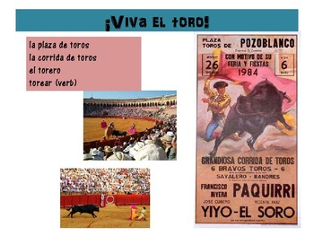Bullfighting-Corridas de toros