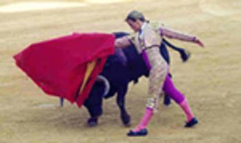 Bullfighting in Spain PowerPoint