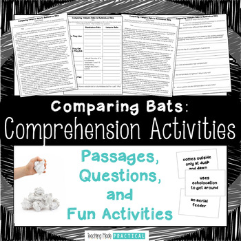Bumblebee Bats and Vampire Bats Reading Comprehension and Snowball Fight