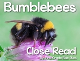 Bumblebee Close Read