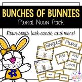 Plural Nouns Center Activities
