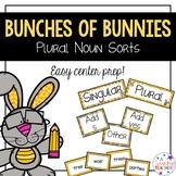 Plural Noun Center Activities