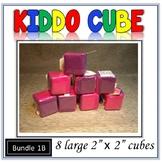 Pocket Cube Bundle 1B