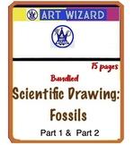 Bundle - Scientific Drawing Fossils (Part 1, Part 2)  15 pages