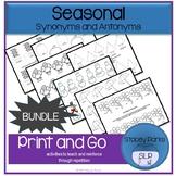 Bundle: Seasonal Synonym & Antonym activities