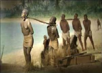 Bundle of 5 - Slavery in the United States - 1607-1860