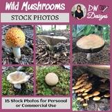 Bundle Stock Photos of 15 Wild Mushrooms