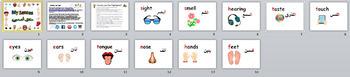 Bundle Theme Flashcards Arabic and English