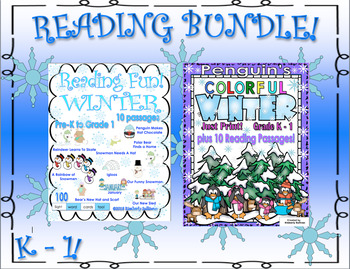 Bundle Winter Reading Comprehension Passages and Questions