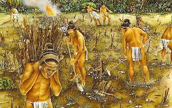 Bundle of 2 - Ancient Civilizations - Our Human Ancestors & Unit Vocabulary