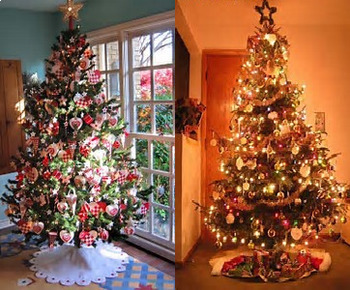 Bundle of 2 - Celebrating Christmas - Christmas Carols & Christmas Trees