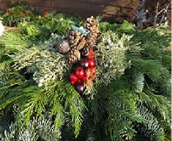 Bundle of 2 - Celebrating Christmas - Holiday Greenery & Snow & Ice