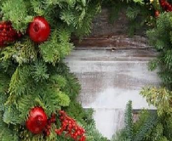Bundle of 2 - Celebrating Christmas - Holiday Greenery & Snow & Ice