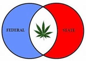 Bundle of 2 - Establishing the US Government - Federalism