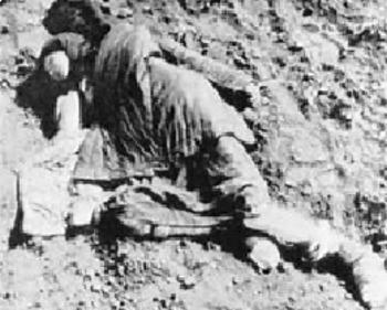 Bundle of 2 - Genocide by Stalin & Hitler