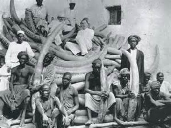 Bundle of 2 - Slavery in the United States - Black Codes & State Laws