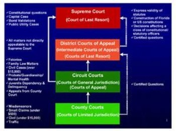 Bundle of 2 - United States Court System - Federal & State