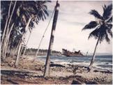 Bundle of 2 - World War II - The Battles of Guadalcanal