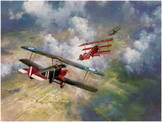 Bundle of 3 - World War I - The Flying Aces of WW I
