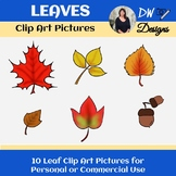 Bundle of Fall Leaves Stock Photos - Group of 10