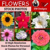 Bundle of Flower Stock Photos - Flower Picture Pack - Group of 10