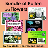 Bundle of SEM Images and Photographs of Flowers, Pollen, a