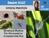 Bundle of Stock Photos - Bug Picture Pack - Group of 10
